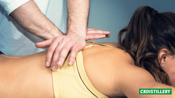 Chiropractor's-Guide-to-CBD (1)