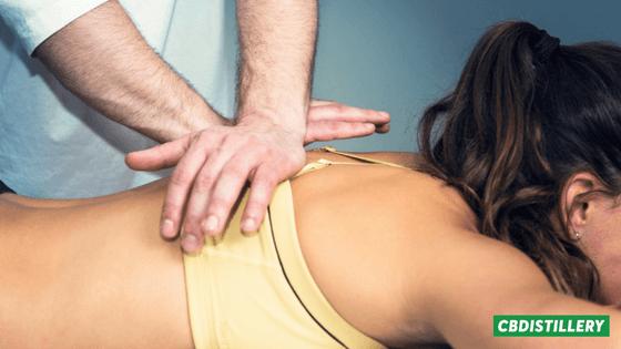 Chiropractor's-Guide-to-CBD (1)